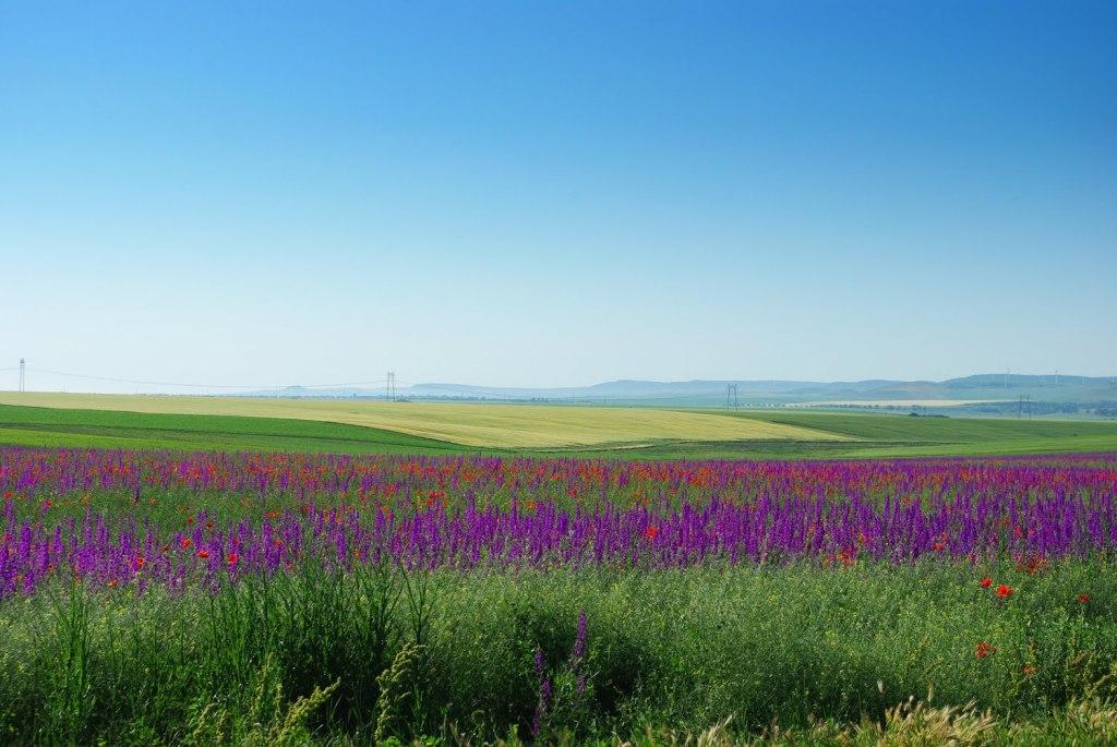 Tulcea Romania