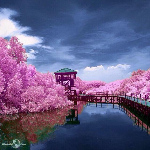 wonderful_places